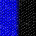 Czarne i Niebieskie